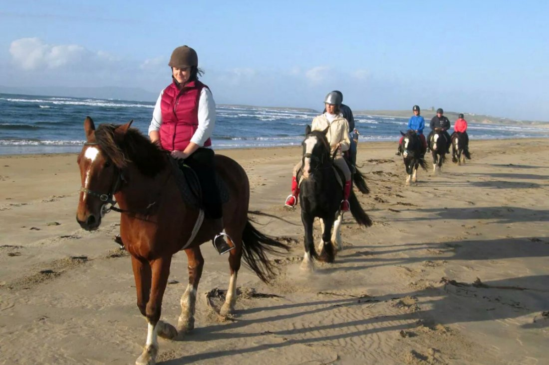 Horse Riding Video